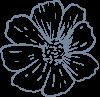 flowerbv2